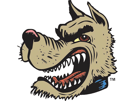 Buyers Products Company Salt Dogg logo